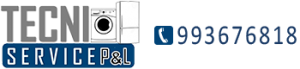 TECNISERVICE P&L